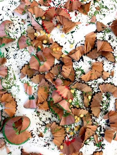 Particolare Albero di Matite (con i semi di peperoncino)
